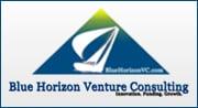 Blue Horizon Venture Consulting