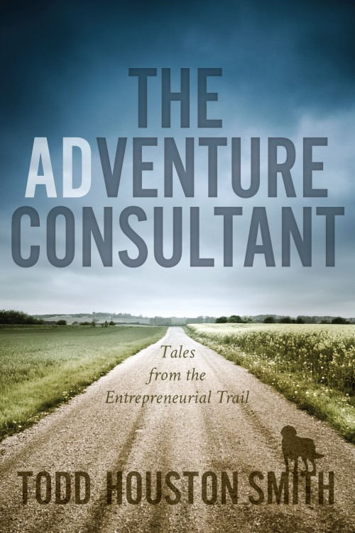 The Adventure Consultant by Todd Smith